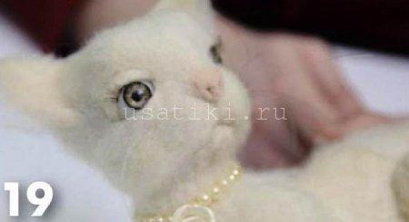 валяние кошки из шерсти