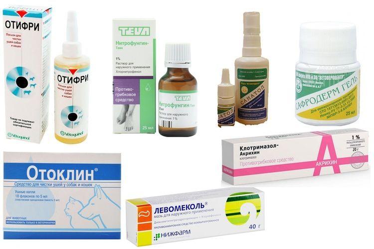 Препараты для лечения отита у собаки