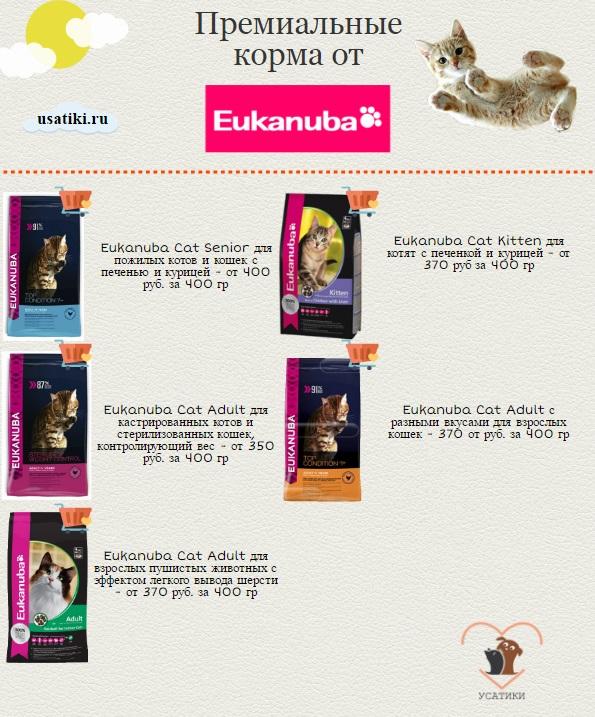 Эукануба для кошек лучшие корма
