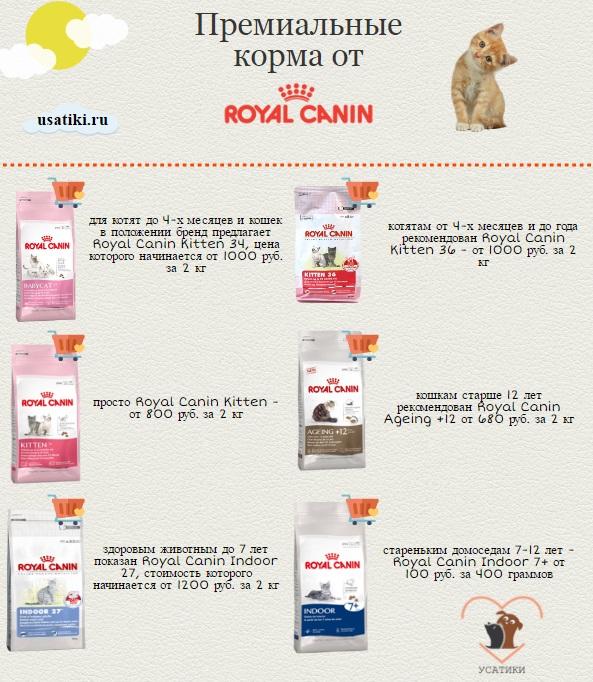 Рейтинг сухих кормов для кошек премиум класса 2015 thumbnail