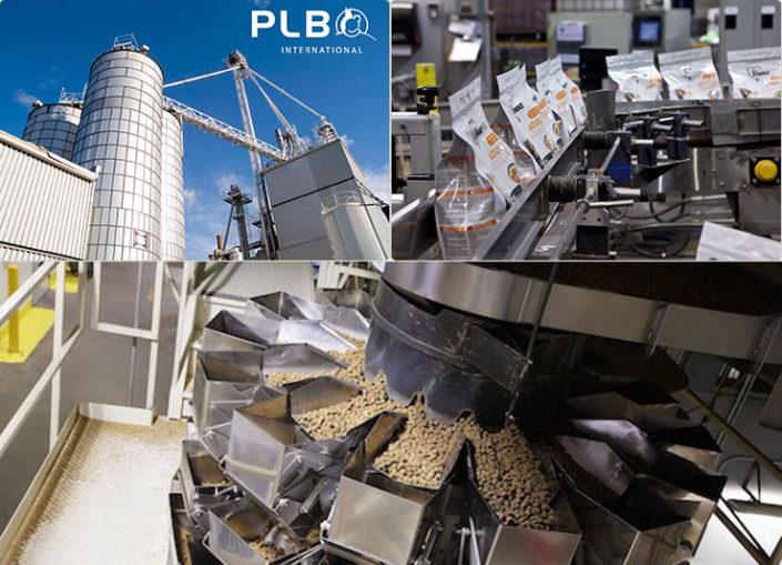 Компания plb international inc