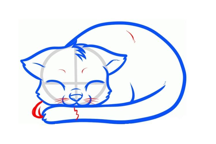 Рисунок спящей кошки