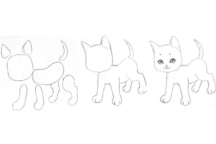 Первый этап рисования котенка