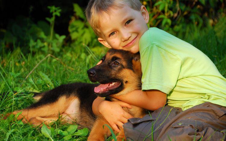 Ребенок обнимает щенка овчарки