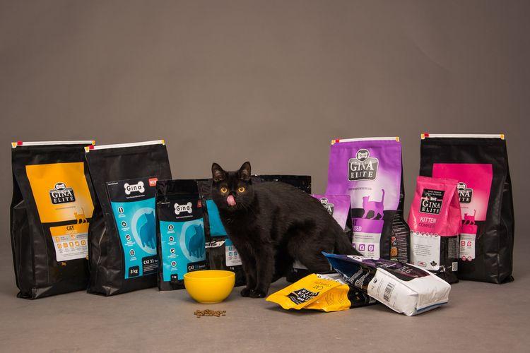 Черная кошка возле упаковок с кормами