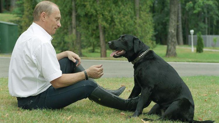 Президент Владимир Путин со своей собакой