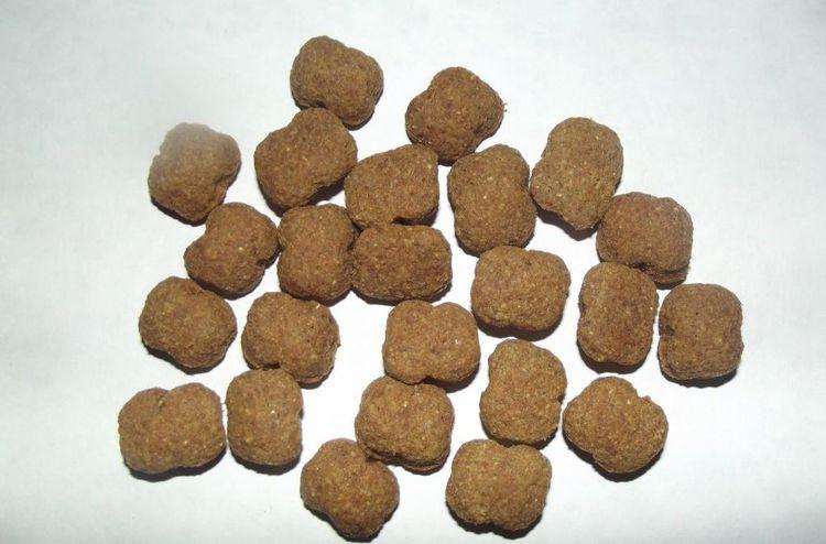 Гранулы сухого корма для собак