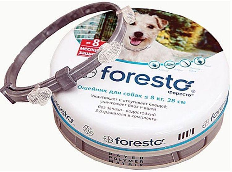 Foresto от блох и клещей