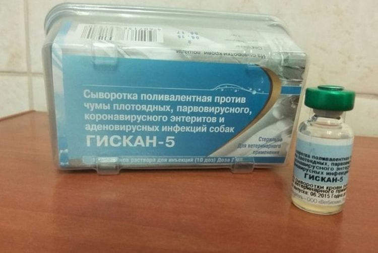 Сыворотка для собак Гискан 5