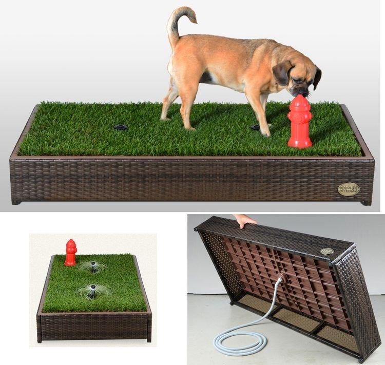 Лоток для собак с натуральной травой