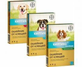 Килтикс: ошейник от клещей для собак