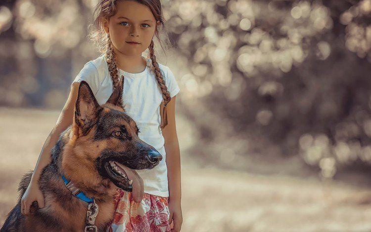 Немецкая овчарка и ребенок