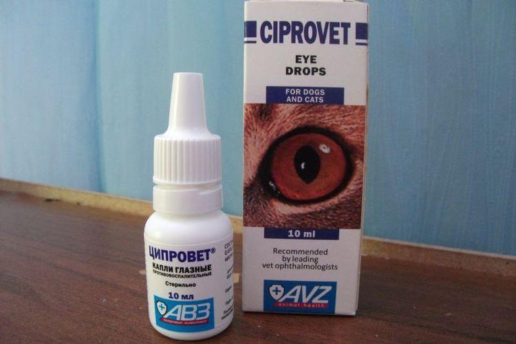 Глазные капли для собак Ципровет
