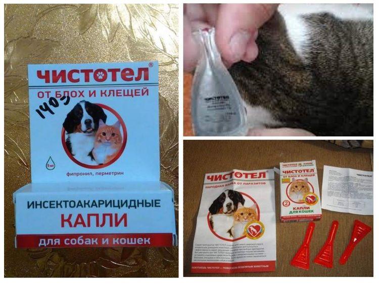 Капли Чистотел для кошек