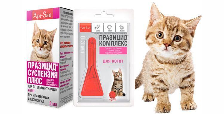 Капли Празицид для кошек