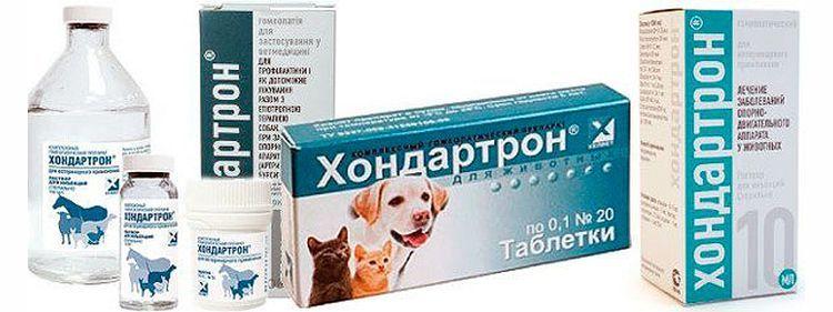 Хондартрон для собак