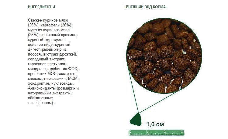 Состав и внешний вид корма Adult Cat Chicken+Potato
