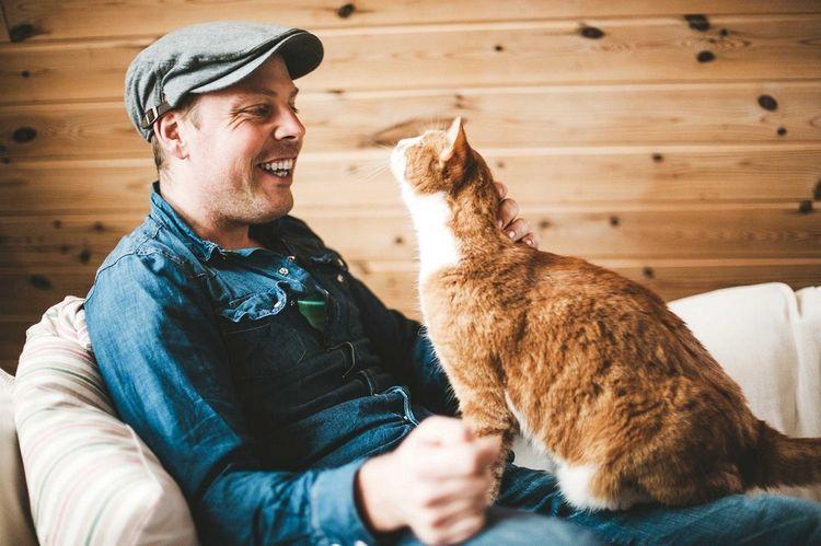 Кот и человек