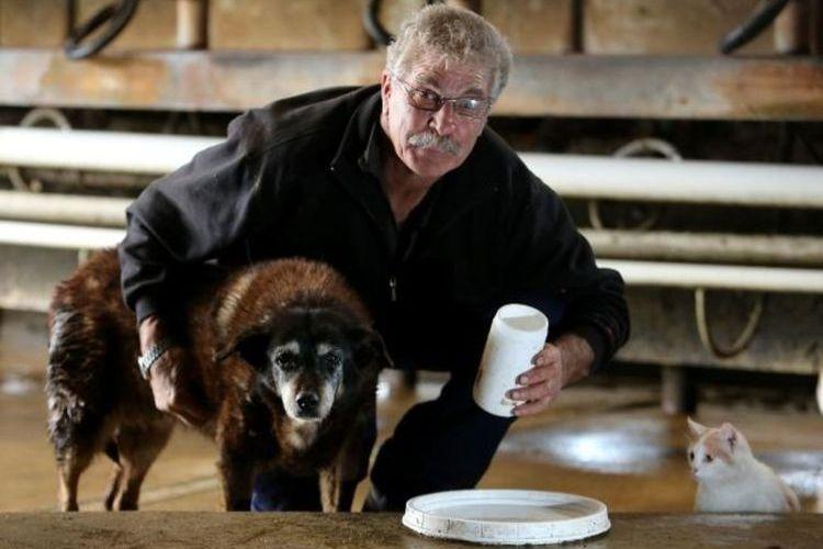 Самая старая собака Мэгги