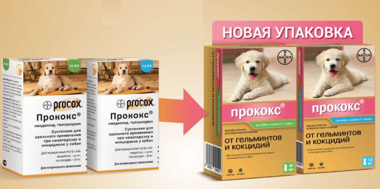 Прококс для собак