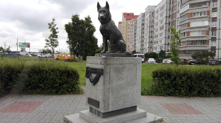 Памятник преданности (г. Тольятти)