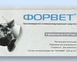 Форвет для кошек