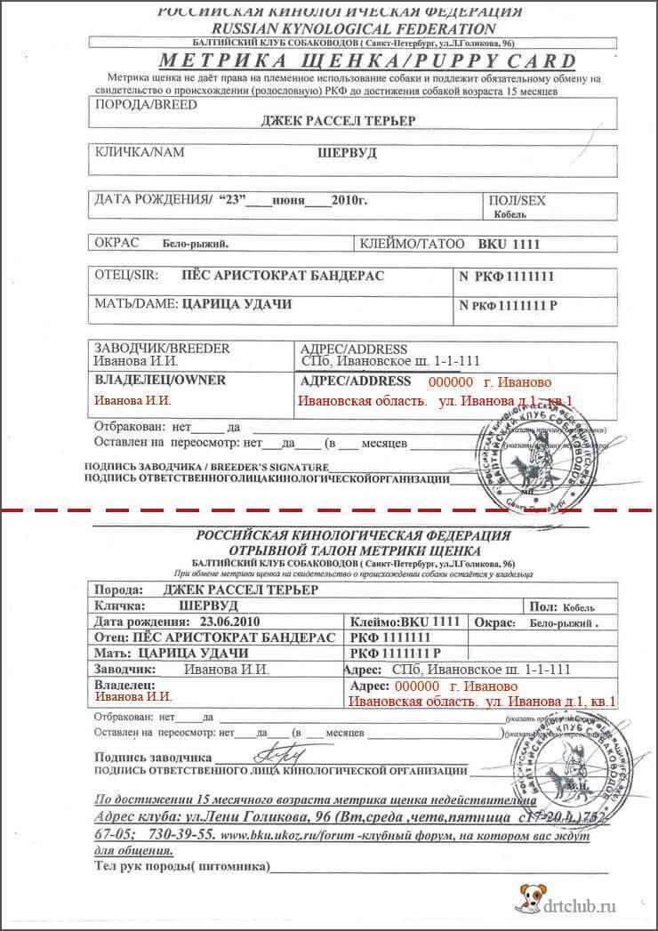 Паспорт щенка или метрика