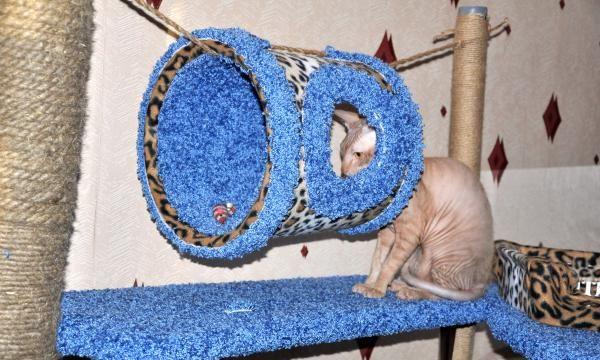 Игровой комплекс для кота своими руками чертежи