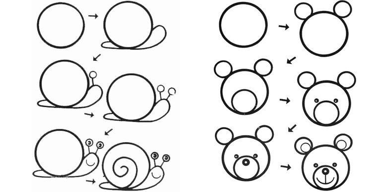 Рисуем животных поэтапно