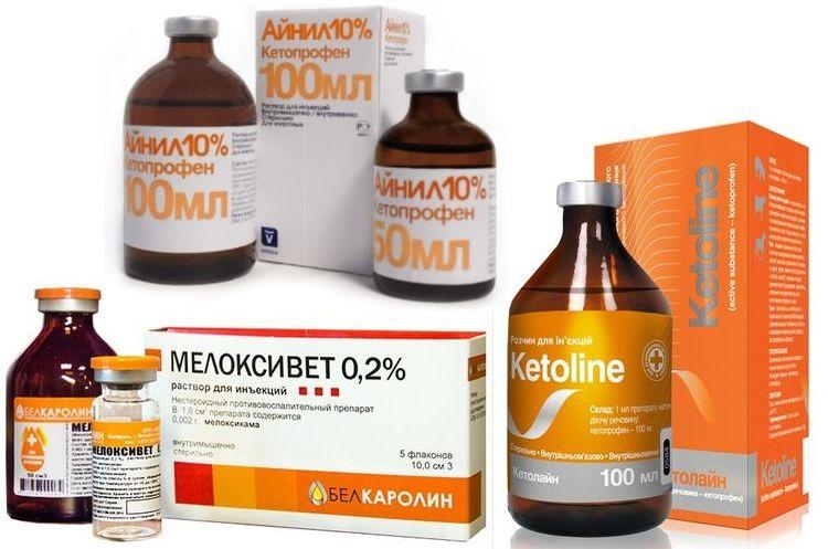 Препараты для лечения ОХТ у кошек