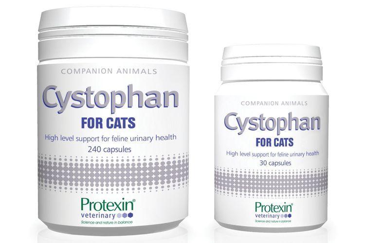Цистофан для кошек