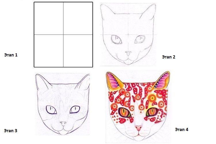 МК как нарисовать мордочку кошки поэтапно