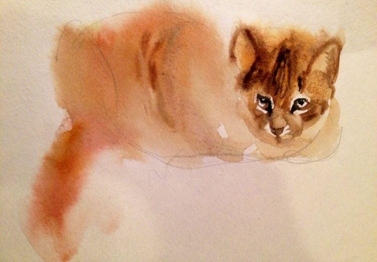 Рисунок кота акварелью
