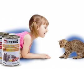 Онтарио корм для кошек