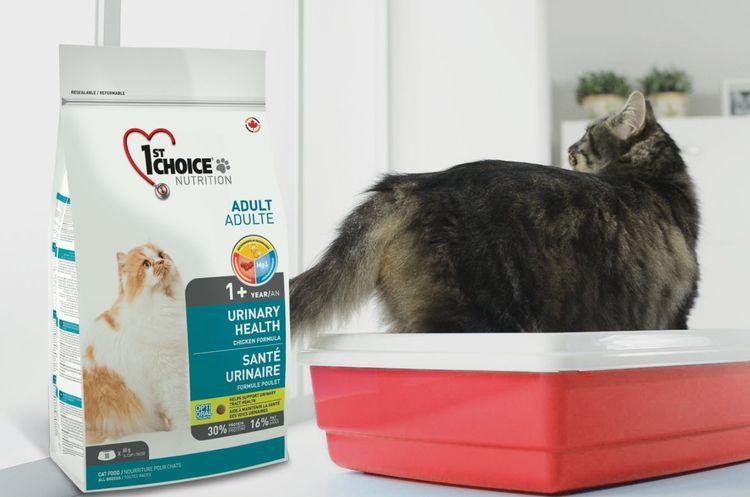 Корм для котов 1st Choice Urinary при МКБ