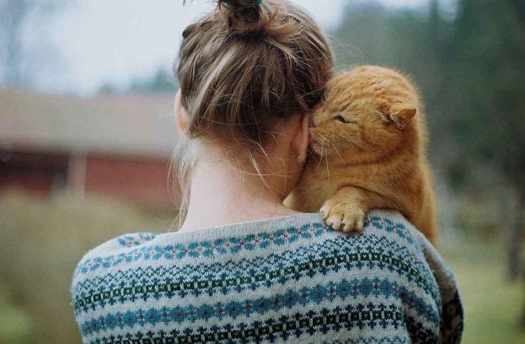 Зоопсихолог с котом