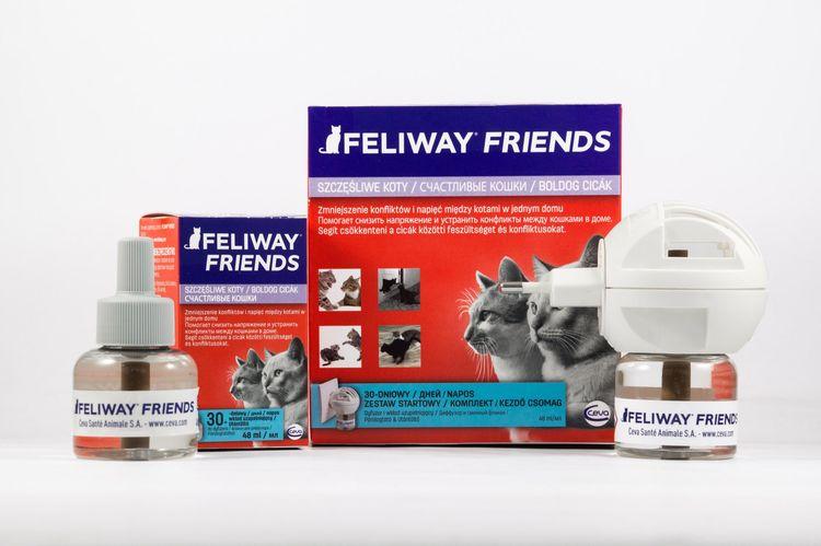 Феливей френдз для кошек