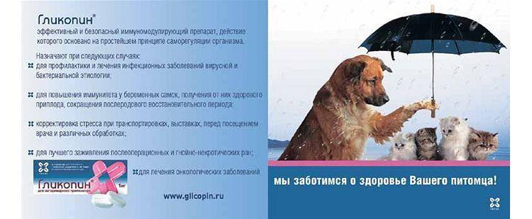 Показания к применению Гликопина для животных