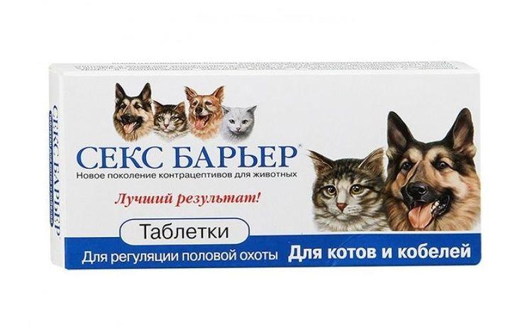 Лекарство коту от секса