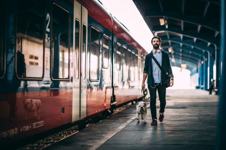 Собака с хозяином в метро