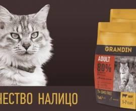 Корм Grandin для кошек и котов