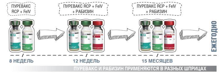 Сочетание Рабизина и Пуревакса