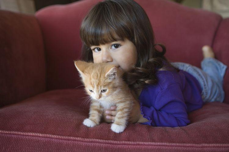 Как проявляется аллергия на кошек у детей