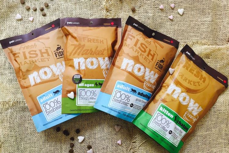 Now Natural Holistic - корм для кошек