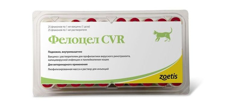 Фелоцел - вакцина для кошек и котов