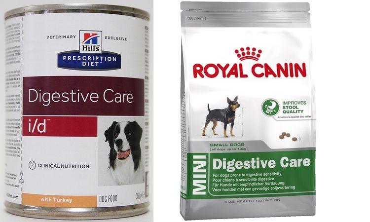 Диета для собаки при энтероколите