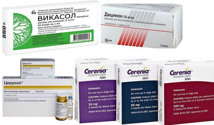 Лекарства для лечения рвоты с кровью у собаки
