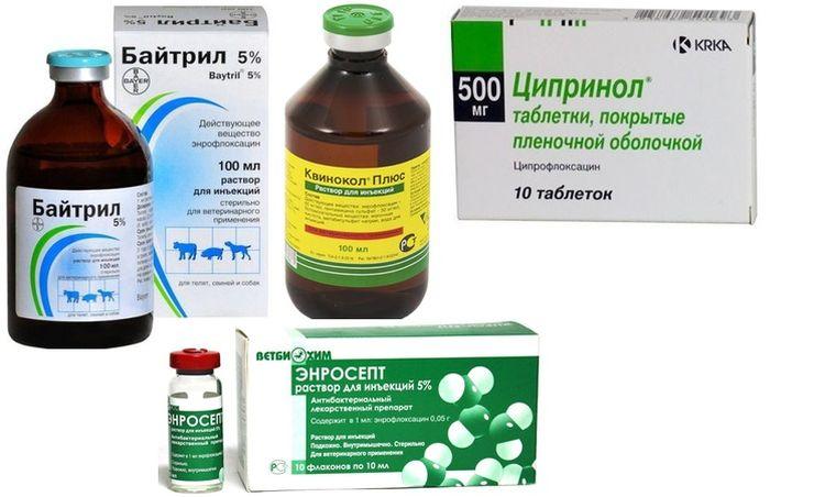 Препараты для лечения стафилококка