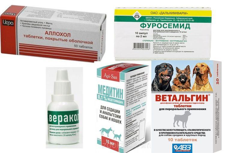 Препараты для лечение асцита у собак