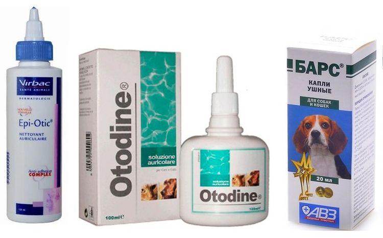 Капли для лечения отодектоза у собак
